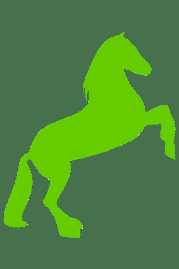 Teivaistenahon Tila-logo